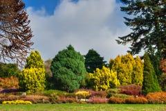 Engelse tuin in de Herfst Stock Afbeelding