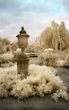 Engelse Tuin in Infrared Royalty-vrije Stock Afbeeldingen