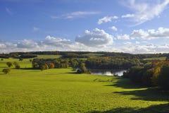 Engelsk bygd: grön fält, trees och lake Royaltyfri Fotografi