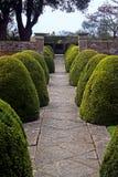 engelsk formell trädgård Arkivfoto