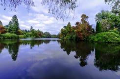 Engelsk höst med sjön och träd - Uckfield, östliga Sussex, Förenade kungariket royaltyfri bild