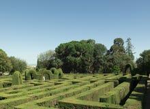 engelsk labyrint Royaltyfria Foton