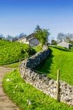 Engelsk landsgränd som leder till ett lantbrukarhem Arkivbild