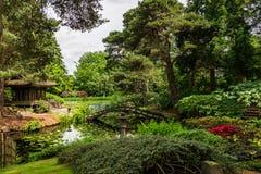 Engelsk offentlig trädgård i sommar royaltyfri bild