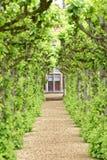 Engelsk trädgård, knebworthhus, England beskurit royaltyfri bild
