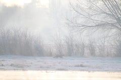 Engelska landskap i vinter med räven som knappt är synlig till och med misten Arkivfoto