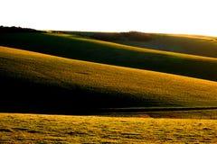 Engelska Rolling Hills Royaltyfria Foton