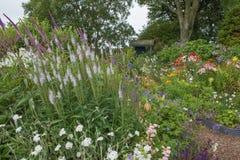 Engelskastilträdgård med blandade färgglade blommor Royaltyfri Foto