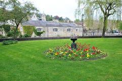 engelskaträdgård Arkivbild