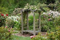 Engelskaträdgård efter regna arkivfoton