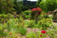 Engelskaträdgård efter regna arkivbild