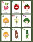 Engelskt alfabet för tryckbar flashcard från R till Z med frukter och royaltyfri illustrationer