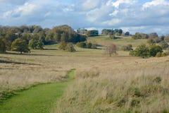 Engelskt parklandlandskap Fotografering för Bildbyråer
