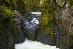 Engelsmanfloden faller lägre vattenfallavsnitt i Vancouver Isl Arkivbild
