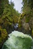 Engelsmanfloden faller lägre vattenfallavsnitt i Vancouver Isl Arkivfoton
