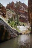 Engen des Nationalparks zion Schlucht im Sommer lizenzfreie stockbilder
