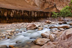 Engen in Zion National Park, USA Lizenzfreie Stockfotos