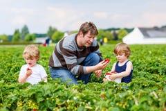 Engendre y dos muchachos del niño en granja de la fresa en verano Imagenes de archivo