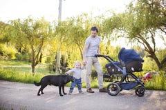 Engendrez avec la fille de fils et de bébé dans la poussette Parc ensoleillé Photos libres de droits