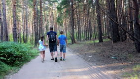Engendrez avec le fils et la fille marchant dans la forêt banque de vidéos