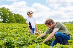 Engendrez et peu de garçon d'enfant à la ferme de fraise en été Photo libre de droits