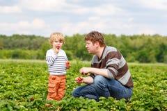 Engendrez et peu de garçon d'enfant à la ferme de fraise en été Images libres de droits