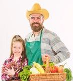 Engendrez l'agriculteur ou le jardinier avec des légumes de récolte de panier de prise de fille Jardinage et moisson Ferme de fam images libres de droits