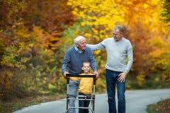 Engendrez le fils et le petit-fils adultes pour une promenade en parc Image stock