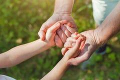 Engendrez tenir des mains d'enfant, de parent et d'enfant image libre de droits