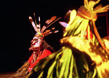 Enggang dancer from Dayak Stock Images