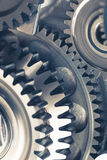 Engine gear wheels. Engine gears wheels, closeup view Stock Image