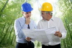 Engineer architect two expertise team plan forest. Architect engineer two expertise team plan talking hardhat forest jungle trees stock images