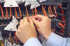 Engineer in data processing center of ISP Internet Service Provider hold fiber patch cords. Royalty Free Stock Images
