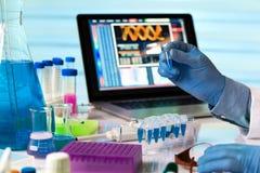 Engineer genetic working in laboratory Stock Photo
