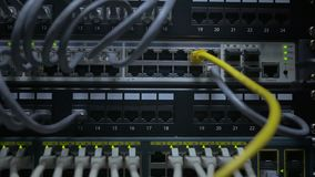An IT engineer`s hand plug in the network cable to the network switch stock video footage