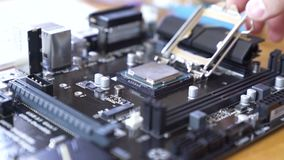 Engineer sets the CPU into the motherboard. Close up 4K shot stock video footage