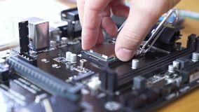 Engineer sets the CPU into the motherboard. Close up 4K shot stock footage