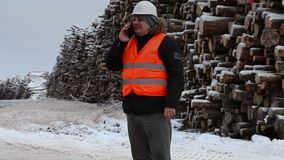 Engineer talking on the smartphone near to piles of logs stock footage