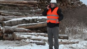 Engineer talking on the smartphone near to piles of logs stock video footage