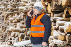 Engineer talking on the smartphone near to piles of logs in winter Royalty Free Stock Photo