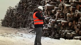 Engineer using tablet PC near to piles of logs in winter. Day stock video footage