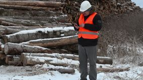 Engineer using tablet PC near to piles of logs stock video footage