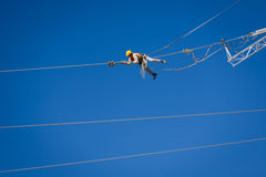 Engineer worker on energy wire Royalty Free Stock Image