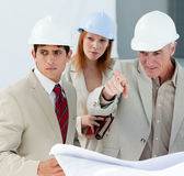 Engineers studying blueprints Royalty Free Stock Photography