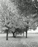 England doncaster Royaltyfria Bilder