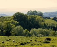 England gloucestershire the forest of dean as seen from ruardean. England gloucestershire, the forest of dean as seen from ruardean beacon ruardean village uk Stock Photo