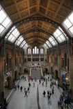 england historii London muzeum naturalny obrazy stock