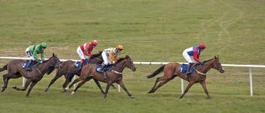 england hästkapplöpningstratford Royaltyfria Bilder