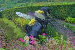 England. Koruel.bumblebee Stock Photography