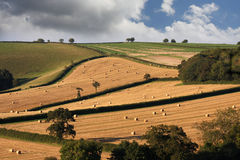 England landscape after the harvest Stock Photo
